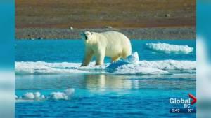 Journey to Canada's Arctic (04:37)