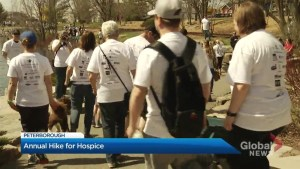 Sun shines bright for annual Hike for Hospice fundraiser in Peterborough