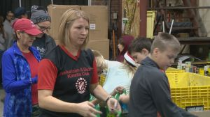 Saskatoon Food Bank holds annual Christmas Hamper Day