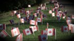 Remembrance Day: Pledge a Flag