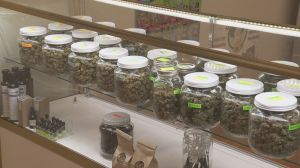 Saskatchewan municipalities want to see pot revenue-sharing agreement