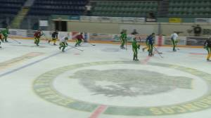 No blueprint for Humboldt Broncos to rebuild team in wake of bus tragedy