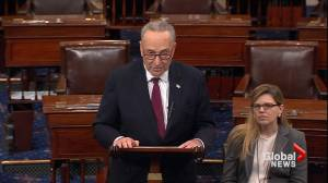 Chuck Schumer says Manafort, Gates indictment show Mueller probe 'moving forward'