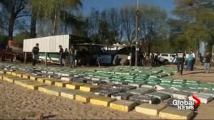 Argentine authorities seize nearly 8 tonnes of marijuana
