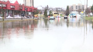 Montreal extends state of emergency