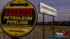 Edmonton Chamber of Commerce pushes feds to get Trans Mountain pipeline expansion built