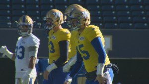Blue Bombers QB Matt Nichols Practice Video