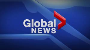 Global News Hour at 6 Edmonton: June 19