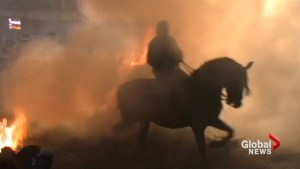 Horses leap through flames in ancient Spanish festival