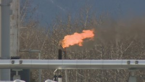 Report says B.C. Oil and Gas Commission hid evidence of gas well leaks