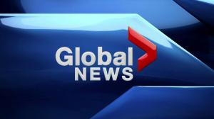 Global News at 6: Mar. 25, 2019