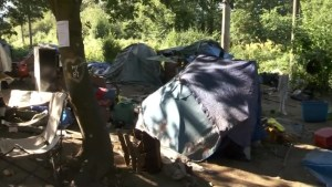 What's behind the dramatic jump in homelessness in the Fraser Valley?