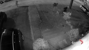 Security camera footage shows vandals targeting home of former director of Canadian Taxpayers Federation