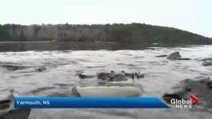 Abnormally warm waters found off Nova Scotia
