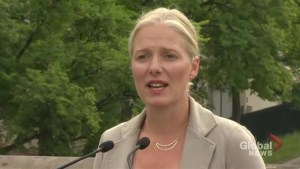 Important to recognize 'good and bad' of history: McKenna