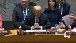 Donald Trump speaks out against proliferation during speech at UN Security Council