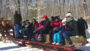 33rd Warkworth Maple Syrup Festival