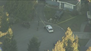 Two dead after hostage-taking incident in Surrey