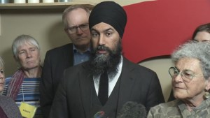 NDP leader wants Liberals to hold pharmaceutical companies accountable for opioid crisis