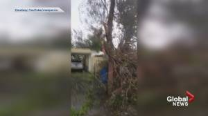 Burnaby man shows before and after of family property in Hurricane struck Puerto Rico