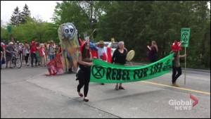 'Extinction Rebellion' in Peterborough targets climate change and loss of species