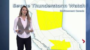 Severe thunderstorm watch for Jun 28 forecast