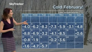 Vancouver, Weather Forecast Feb 26