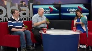 Edmonton Parrot Show