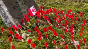 Remembrance Day quiz: how many facts do you know?