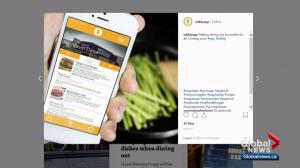 Student designing app to find vegan, vegetarian options at Edmonton eateries
