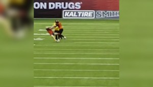 B.C. Lions player hits fans who runs on field