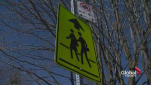 Toronto could see photo radar technology to protect pedestrians