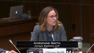 Immigration expert testifies before parliamentary committee on immigration act