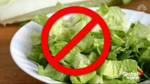 CDC warns of e-coli contamination of romaine lettuce
