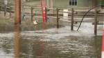 Willowbrook Flooding