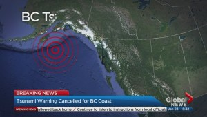 Geophysicist on what triggers a tsunami warning
