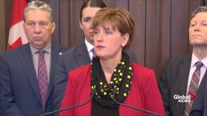 Bibeau explains who has access to supports for canola producers