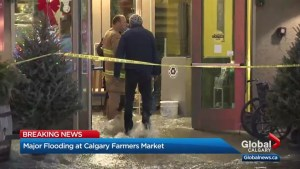 Calgary Farmers' Market flooded after water main break