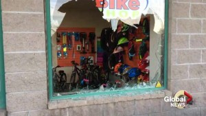Thieves target bicycle shops in Greater Moncton