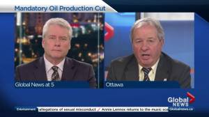 Former Alberta energy minister weighs in on oil production cut
