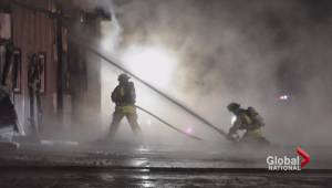 Fire ravages horse barn in Ontario (02:19)