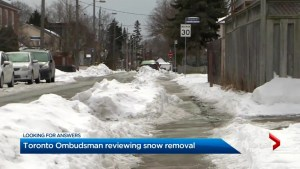 Toronto's ombudsman reviewing city snow removal
