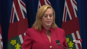 MacLeod calls previous Liberal budget 'fake, irresponsible'