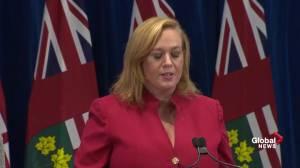 MacLeod calls previous Liberal budget 'fake, irresponsible'