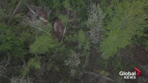 Drone footage show damage of Fintry landslide