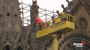 Lack of builders could slow Notre Dame restoration