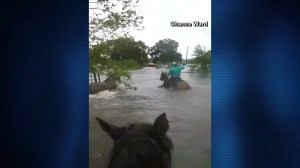 Texas man rides horse through floodwaters to save stranded livestock