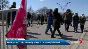York University strike about to enter eighth week
