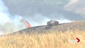 Lethbridge fire crews extinguish large grass fire