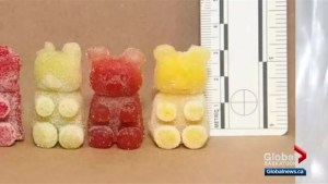 Warnings issued for drug-laced Halloween candy and treats